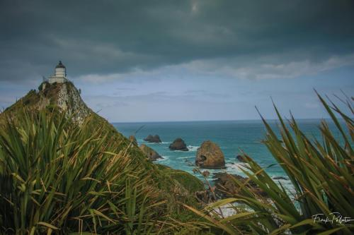 Nugget Point-5
