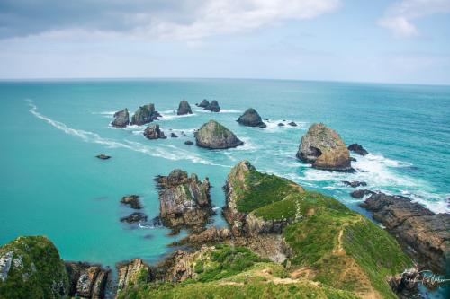 Nugget Point 1200-7
